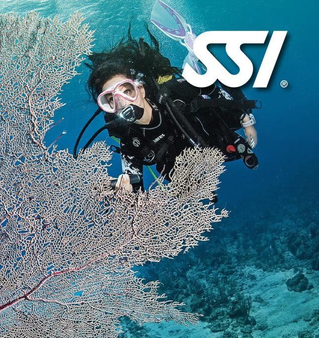Presentation Open Water Diver kopia