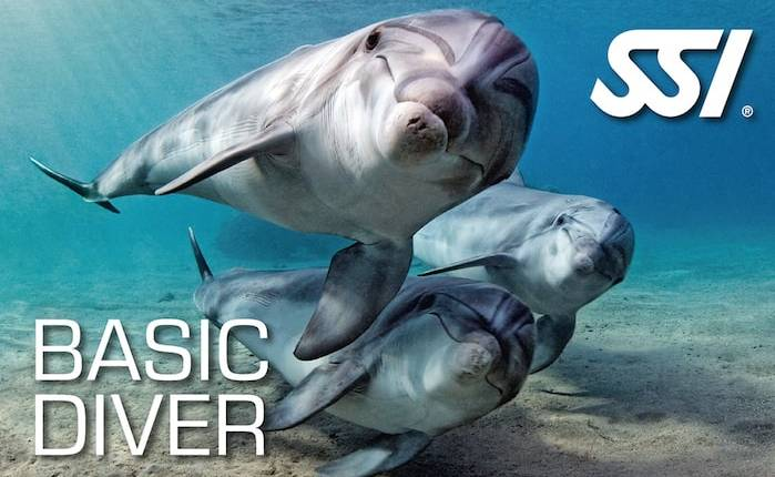 basic diver min 2