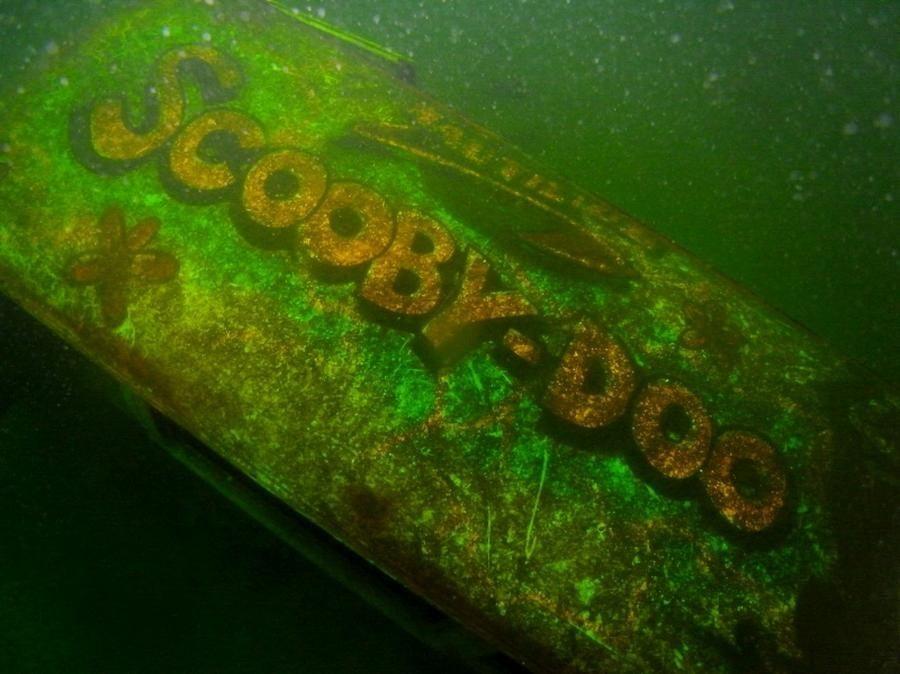 krokodyle0019 9