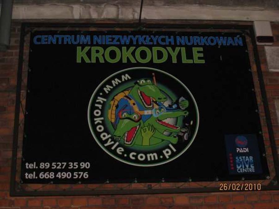 krokodyle0053 18