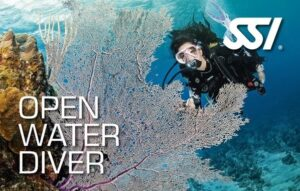 open water diver min