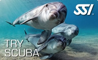 try scuba